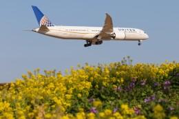 walker2000さんが、成田国際空港で撮影したユナイテッド航空 787-9の航空フォト(飛行機 写真・画像)