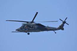 SKY☆101さんが、松島基地で撮影した航空自衛隊 UH-60Jの航空フォト(飛行機 写真・画像)