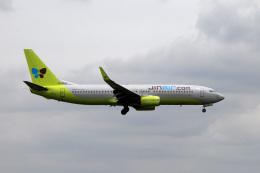アルビレオさんが、成田国際空港で撮影したジンエアー 737-8SHの航空フォト(飛行機 写真・画像)