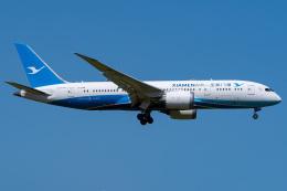さんごーさんが、成田国際空港で撮影した厦門航空 787-8 Dreamlinerの航空フォト(飛行機 写真・画像)