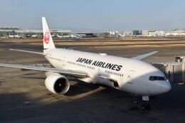 こじゆきさんが、羽田空港で撮影した日本航空 777-246/ERの航空フォト(飛行機 写真・画像)