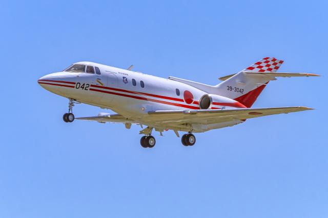 suu451さんが、入間飛行場で撮影した航空自衛隊 U-125 (BAe-125-800FI)の航空フォト(飛行機 写真・画像)