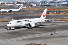 航空フォト:JA833J 日本航空 787-8 Dreamliner