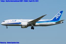 Chofu Spotter Ariaさんが、成田国際空港で撮影した全日空 787-8 Dreamlinerの航空フォト(飛行機 写真・画像)