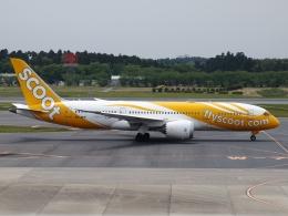 FT51ANさんが、成田国際空港で撮影したスクート 787-8 Dreamlinerの航空フォト(飛行機 写真・画像)