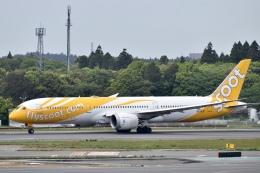 東亜国内航空さんが、成田国際空港で撮影したスクート 787-9の航空フォト(飛行機 写真・画像)
