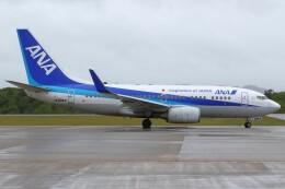 デデゴンさんが、石見空港で撮影した全日空 737-781の航空フォト(飛行機 写真・画像)