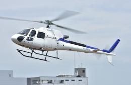 Soraya_Projectさんが、東京ヘリポートで撮影した日本法人所有 AS350B3 Ecureuilの航空フォト(飛行機 写真・画像)