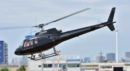 Soraya_Projectさんが、東京ヘリポートで撮影した日本法人所有 AS350B Ecureuilの航空フォト(飛行機 写真・画像)