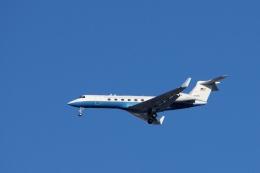 ぼくちゃんさんが、横田基地で撮影したアメリカ空軍 C-37A Gulfstream V (G-V)の航空フォト(飛行機 写真・画像)