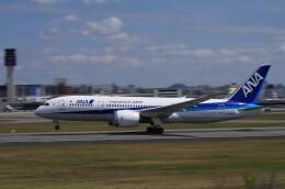 mild lifeさんが、伊丹空港で撮影した全日空 787-8 Dreamlinerの航空フォト(飛行機 写真・画像)