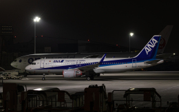 airbandさんが、羽田空港で撮影した全日空 A320-214の航空フォト(飛行機 写真・画像)