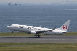 プルシアンブルーさんが、羽田空港で撮影した日本航空 737-846の航空フォト(飛行機 写真・画像)