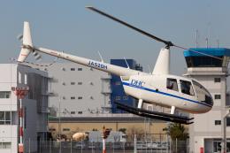 (新)ふぁんとむ改さんが、東京ヘリポートで撮影したディーエイチシー R44 Raven IIの航空フォト(飛行機 写真・画像)