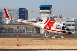 (新)ふぁんとむ改さんが、東京ヘリポートで撮影した朝日航洋 AS350B3 Ecureuilの航空フォト(飛行機 写真・画像)