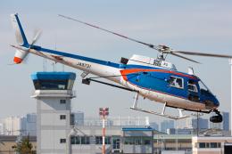 (新)ふぁんとむ改さんが、東京ヘリポートで撮影したアカギヘリコプター AS350B1 Ecureuilの航空フォト(飛行機 写真・画像)