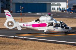 (新)ふぁんとむ改さんが、東京ヘリポートで撮影した東邦航空 AS365N2 Dauphin 2の航空フォト(飛行機 写真・画像)