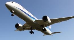 新城 JAL alpha rainbowさんが、伊丹空港で撮影した全日空 787-9の航空フォト(飛行機 写真・画像)