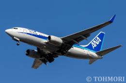 遠森一郎さんが、福岡空港で撮影した全日空 737-781の航空フォト(飛行機 写真・画像)
