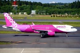SFJ_capさんが、成田国際空港で撮影したピーチ A320-214の航空フォト(飛行機 写真・画像)