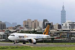 HLeeさんが、台北松山空港で撮影したタイガーエア台湾 A320-271Nの航空フォト(飛行機 写真・画像)