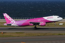 航空フォト:JA817P ピーチ A320