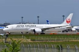南国の防人さんが、成田国際空港で撮影した日本航空 787-9の航空フォト(飛行機 写真・画像)