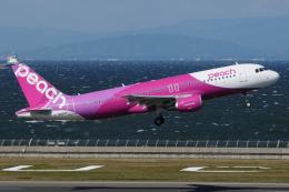 きんめいさんが、中部国際空港で撮影したピーチ A320-214の航空フォト(飛行機 写真・画像)