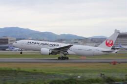 mild lifeさんが、伊丹空港で撮影した日本航空 777-246/ERの航空フォト(飛行機 写真・画像)