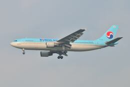 ポン太さんが、成田国際空港で撮影した大韓航空 A300B4-622Rの航空フォト(飛行機 写真・画像)