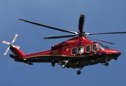 チャーリーマイクさんが、東京ヘリポートで撮影した日本法人所有 AW139の航空フォト(飛行機 写真・画像)