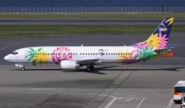 新城 JAL alpha rainbowさんが、羽田空港で撮影したスカイネットアジア航空 737-4M0の航空フォト(飛行機 写真・画像)