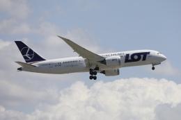 m_aereo_iさんが、成田国際空港で撮影したLOTポーランド航空 787-8 Dreamlinerの航空フォト(飛行機 写真・画像)