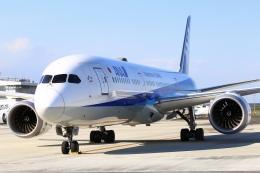 ちゅういちさんが、羽田空港で撮影した全日空 787-9の航空フォト(飛行機 写真・画像)