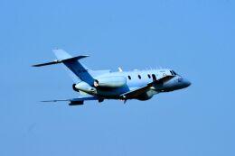 まいけるさんが、名古屋飛行場で撮影した航空自衛隊 U-125A(Hawker 800)の航空フォト(飛行機 写真・画像)