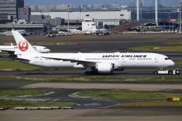 ちゅういちさんが、羽田空港で撮影した日本航空 787-9の航空フォト(飛行機 写真・画像)