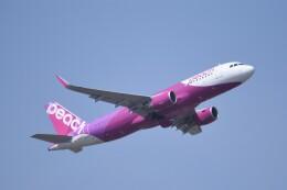 kumagorouさんが、仙台空港で撮影したピーチ A320-214の航空フォト(飛行機 写真・画像)