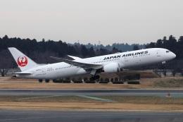 kan787allさんが、成田国際空港で撮影した日本航空 787-9の航空フォト(飛行機 写真・画像)