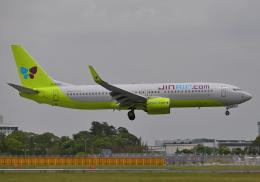 雲霧さんが、成田国際空港で撮影したジンエアー 737-8SHの航空フォト(飛行機 写真・画像)