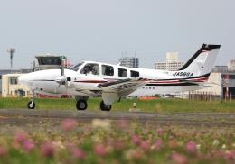 LOTUSさんが、八尾空港で撮影した朝日航空 Baron G58の航空フォト(飛行機 写真・画像)