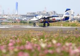 LOTUSさんが、八尾空港で撮影した第一航空 DHC-6-400 Twin Otterの航空フォト(飛行機 写真・画像)
