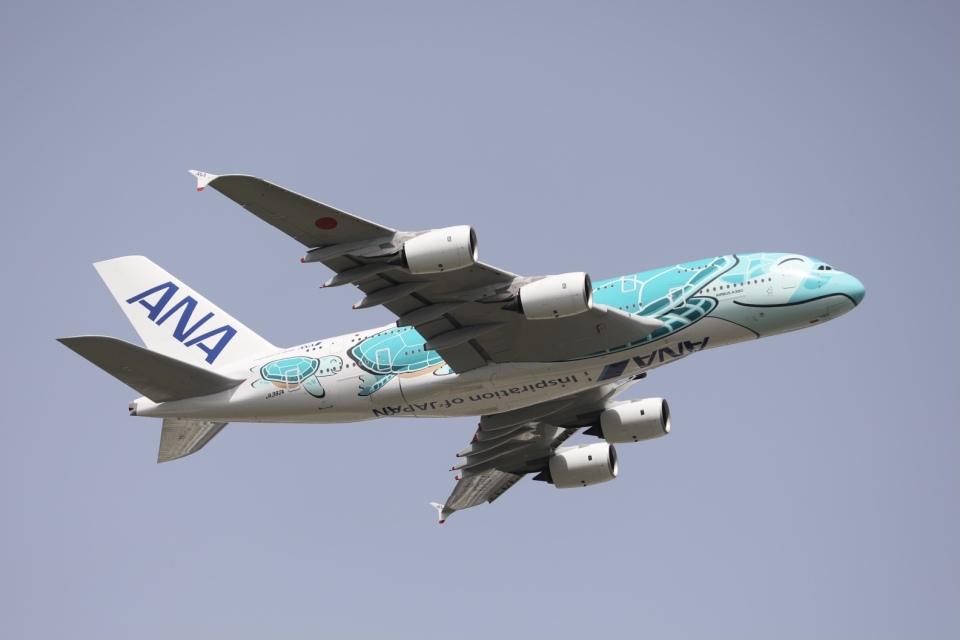 m_aereo_iさんの全日空 Airbus A380 (JA382A) 航空フォト