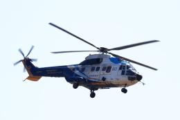 TAKAHIDEさんが、新潟空港で撮影した中日本航空 AS332L Super Pumaの航空フォト(飛行機 写真・画像)