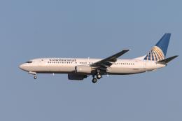 senyoさんが、成田国際空港で撮影したコンチネンタル航空 737-824の航空フォト(飛行機 写真・画像)