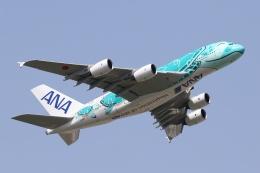 宮崎 育男さんが、成田国際空港で撮影した全日空 A380-841の航空フォト(飛行機 写真・画像)