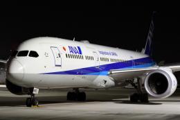 sky77さんが、羽田空港で撮影した全日空 787-9の航空フォト(飛行機 写真・画像)
