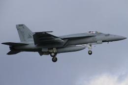 ちゅういちさんが、厚木飛行場で撮影したアメリカ海軍 F/A-18F Super Hornetの航空フォト(飛行機 写真・画像)