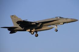 ちゅういちさんが、厚木飛行場で撮影したアメリカ海軍 F/A-18E Super Hornetの航空フォト(飛行機 写真・画像)