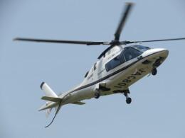ランチパッドさんが、静岡ヘリポートで撮影した小川航空 A109E Powerの航空フォト(飛行機 写真・画像)