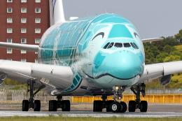 HADAさんが、成田国際空港で撮影した全日空 A380-841の航空フォト(飛行機 写真・画像)